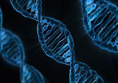 Biologie de synthèse Page d'accueil