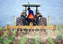 Fertilizantes fosfatados inicio