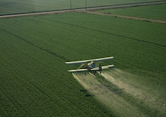 Endocrine disrupting properties of pesticides home
