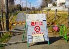 Fukushima Consequences home