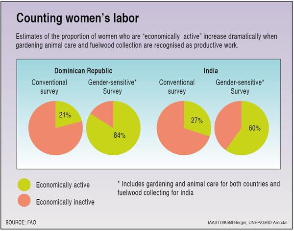 Counting women's labor