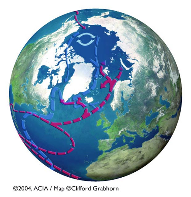 Ocean currents in the Arctic
