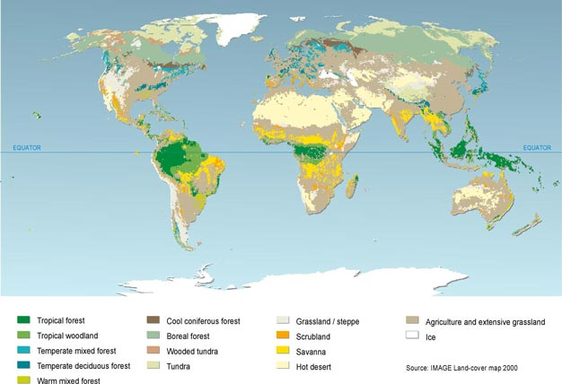 Land cover map for 2000