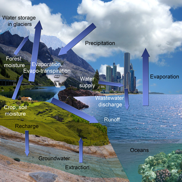 Schematic of the hydrologic cycle components in present-day setting