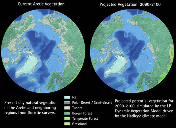 Current - Projected Vegetation