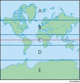 North temperate zone (B) & South temperate zone (D)