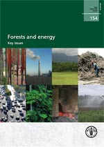 Forests and Energy – Key issues