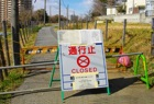 Fukushima Consequences