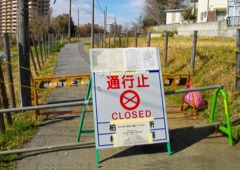 Fukushima Consequences home