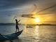 Pêche et aquaculture Page d'accueil