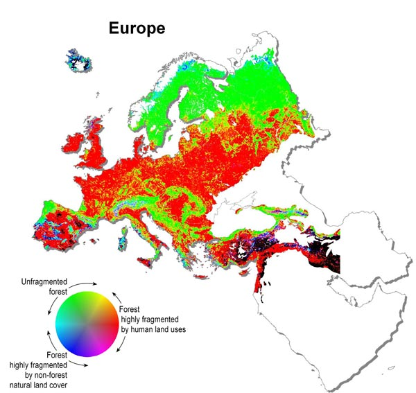 Map of Forest Fragmentation in Europe
