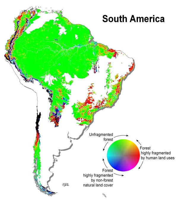 Map of Forest Fragmentation in South America