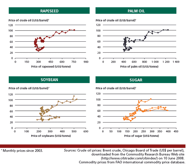Price relationships between crude oil and other biofuel feedstocks,