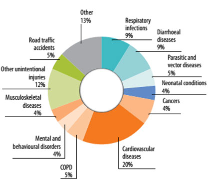 Main diseases contributing to the environmental burden of disease,