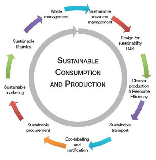 sustainable consumption and production essay help