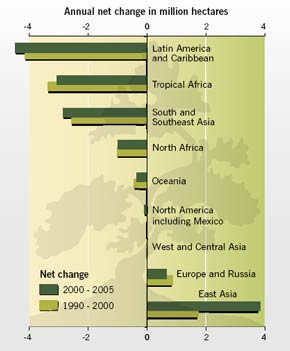 Annual net change in forest area by region(1990–2005)