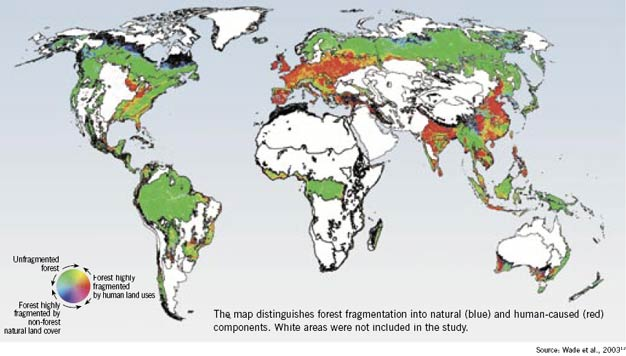 Estimates of forest fragmentation due to anthropogenic causes