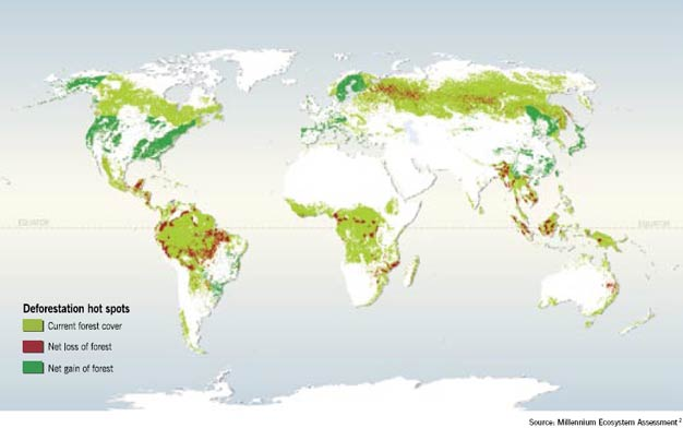 Locations reported by various studies as undergoing high rates of change in forest cover in the past few decades