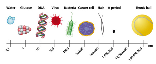 Figure : Size of objects in a nanometer scale. (modified from: 								National Cancer Institute, USA).
