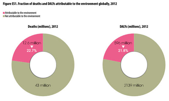 Fraction of deaths and DALYs attributable to the environment globally,                     2012